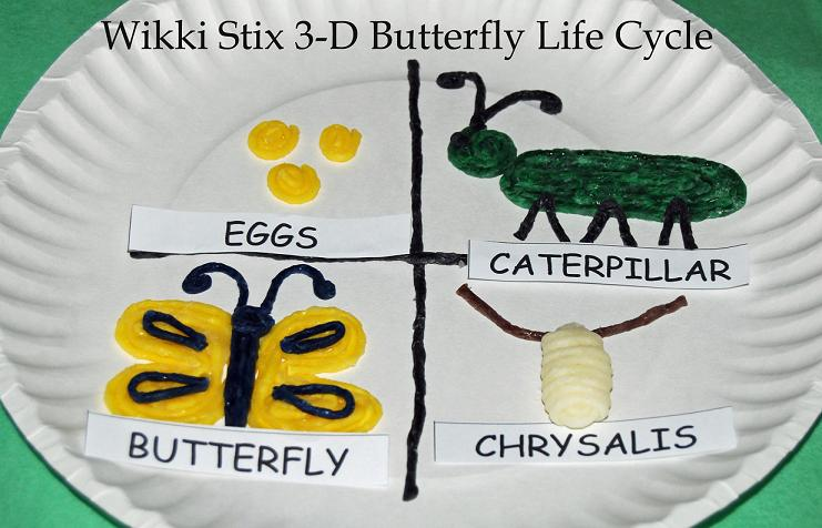 3-D Butterfly Life Cycle Craft for Kids
