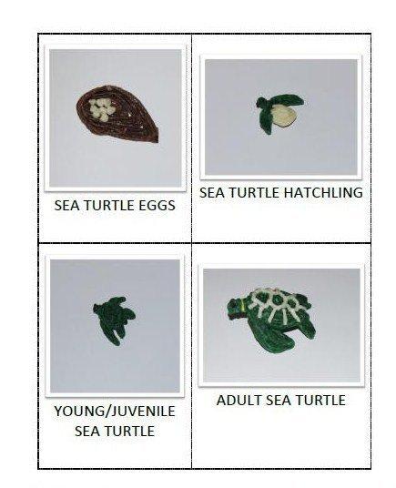 Wikki Stix Sea Turtle Screenshot