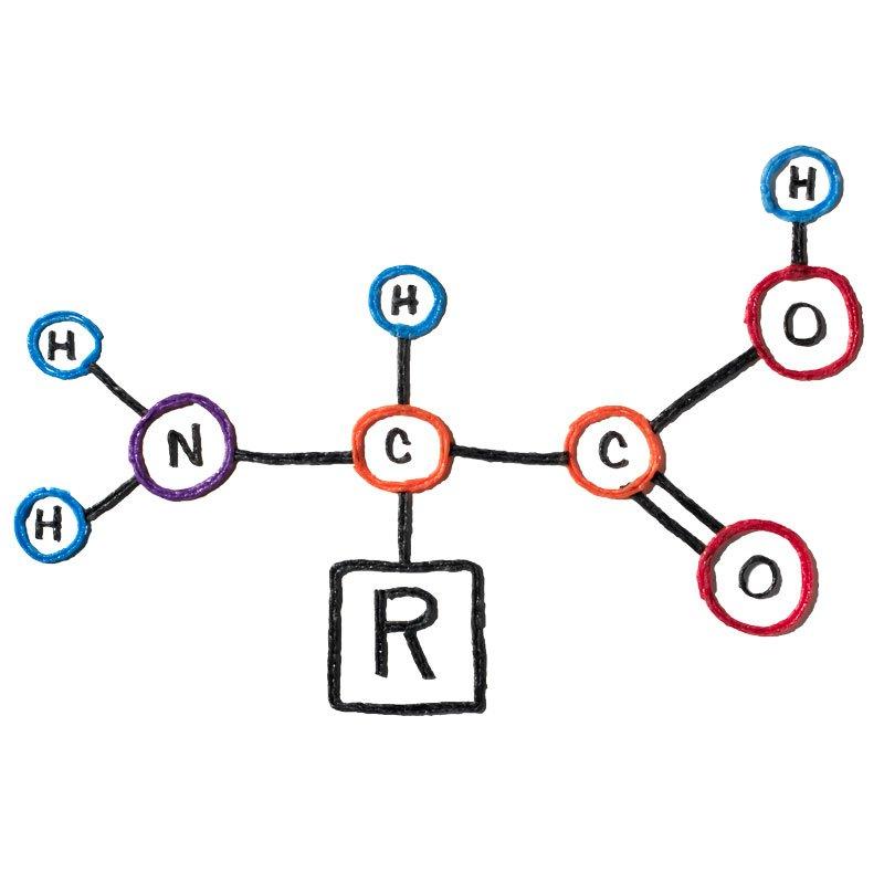 DNA Formula