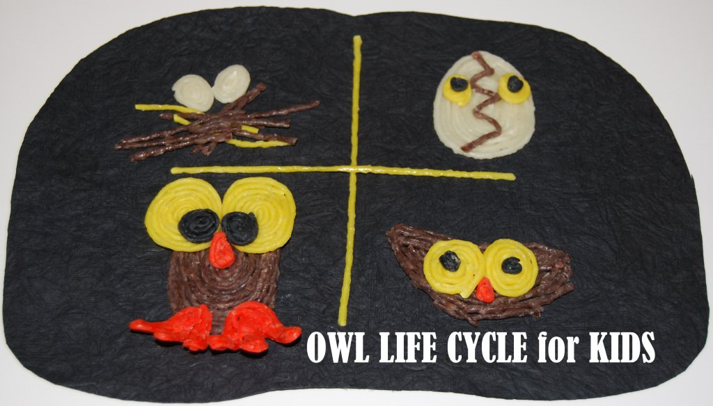 Wikki Stix Owl Life Cycle, Sequencing Cards and Crafts for Kids!