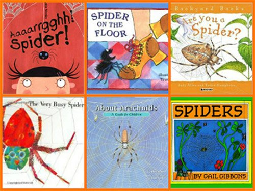 Books about spiders