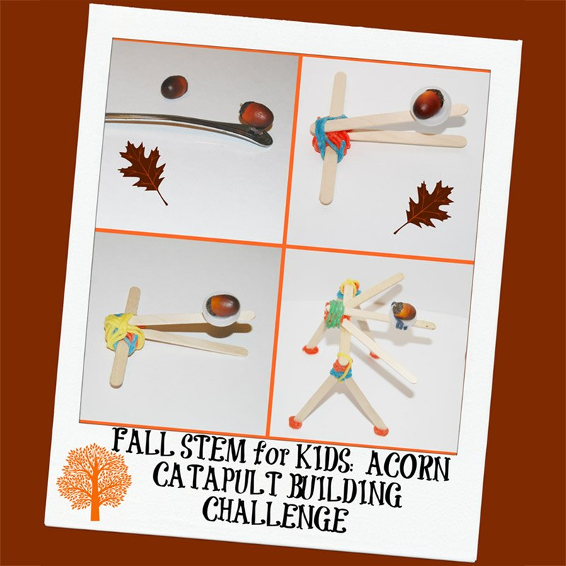 Fall STEM Challenge for Kids: Building an Acorn Catapult