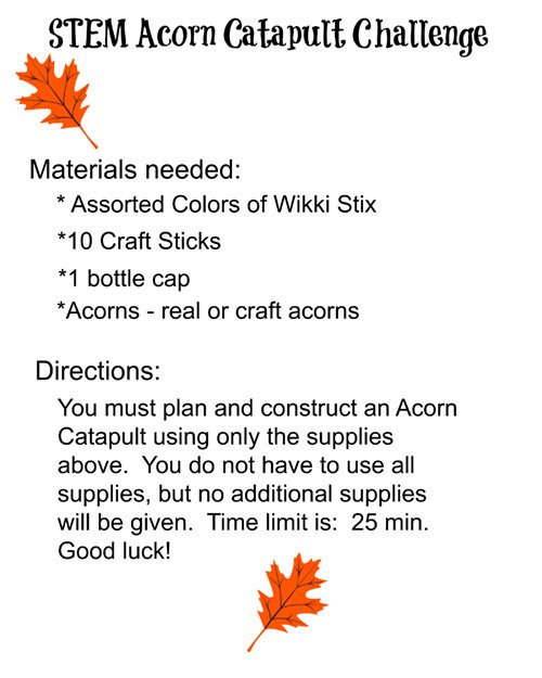 STEM Acorn Catapult Building Challenge Directions