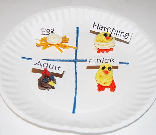 Wikki Stix Paper Plate Chicken Life Cycle Craft