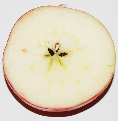 Apple Seeds Star Pattern