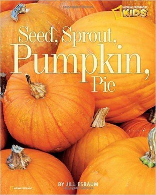 National Geo for Kids Pumpkin