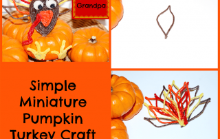 Thanksgiving Miniature Pumpkin Turkey Craft for Kids!