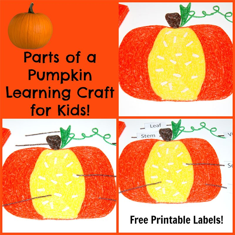 Parts of a pumpkin learning craft for kids wikki stix for Educational crafts for toddlers