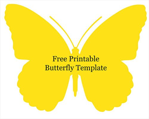 Quilled butterfly crafts with wikki stix wikki stix for Butterfly template free