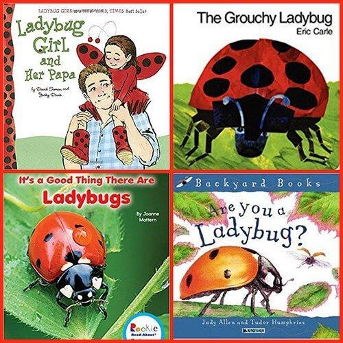 Ladybug Books for kids