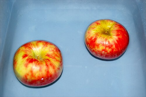Apple Sink or Float Experiment for Kids