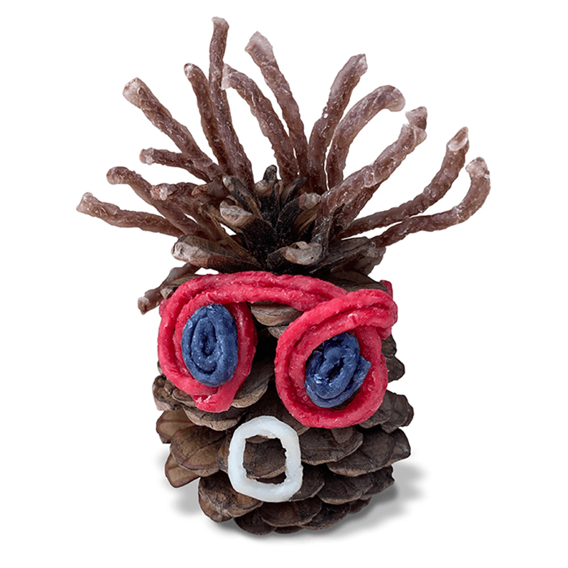 Cool Pinecone Face